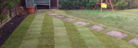 Lawn and Stepping Stones in Kenilworth (2)