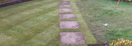 Lawn and Stepping Stones in Kenilworth (3)