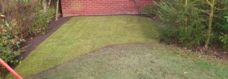 Lawn and Stepping Stones in Kenilworth (4)